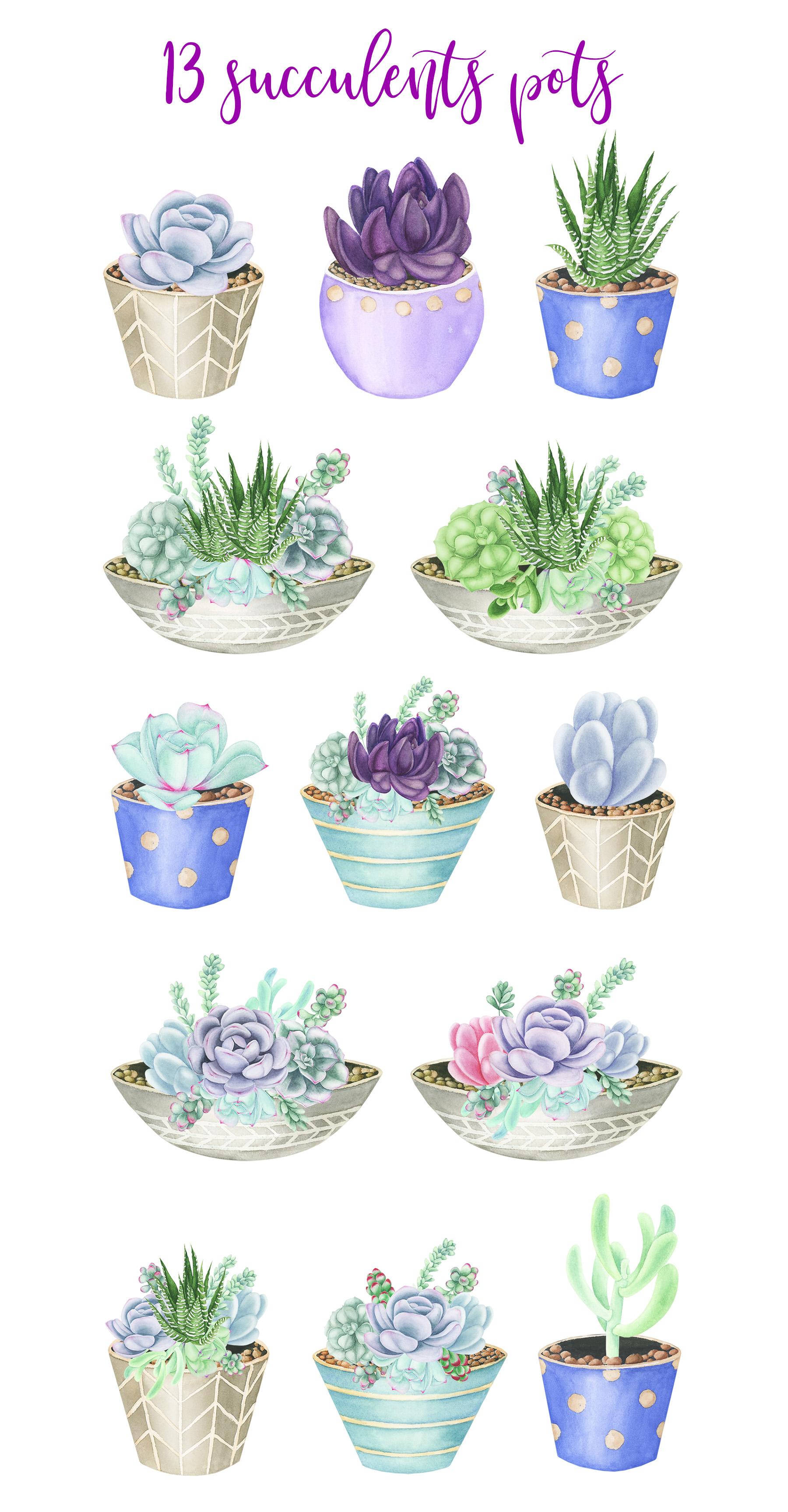 Watercolor Succulents Pots Clipart example image 2