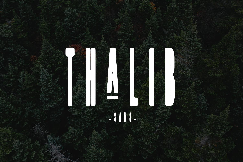 Thalib - Font Duo example image 3