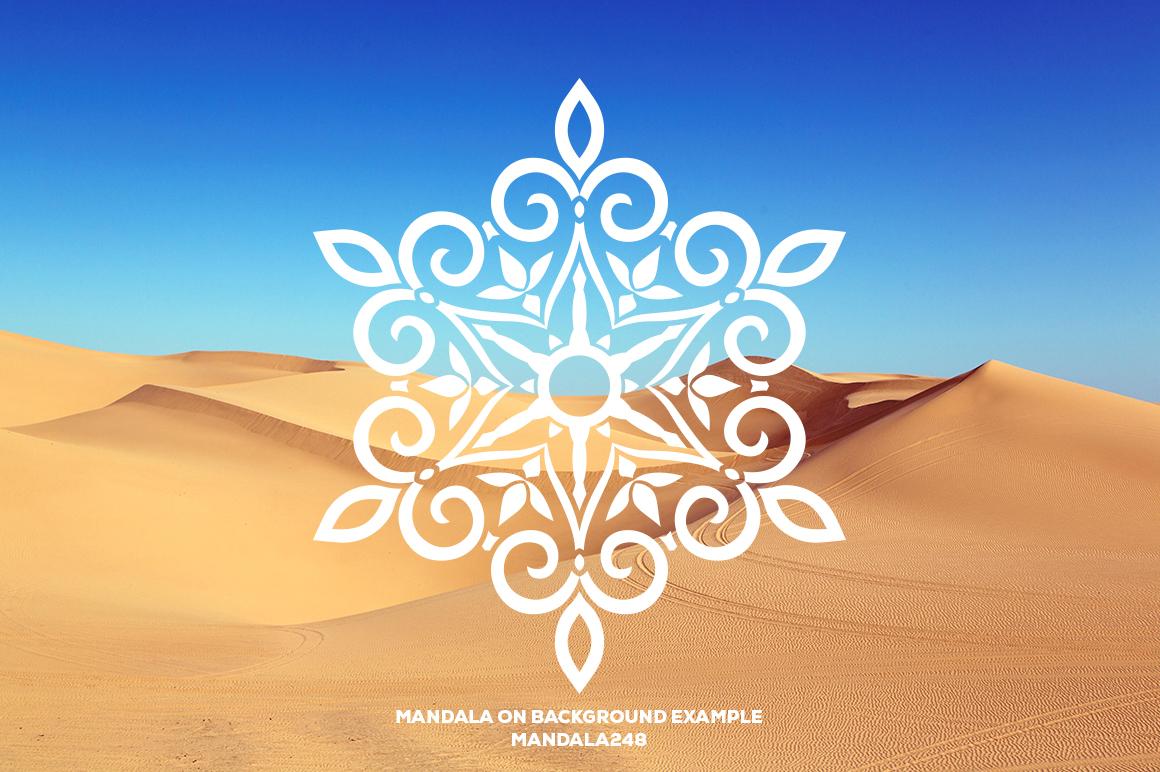 500 Vector Mandala Ornaments example image 33