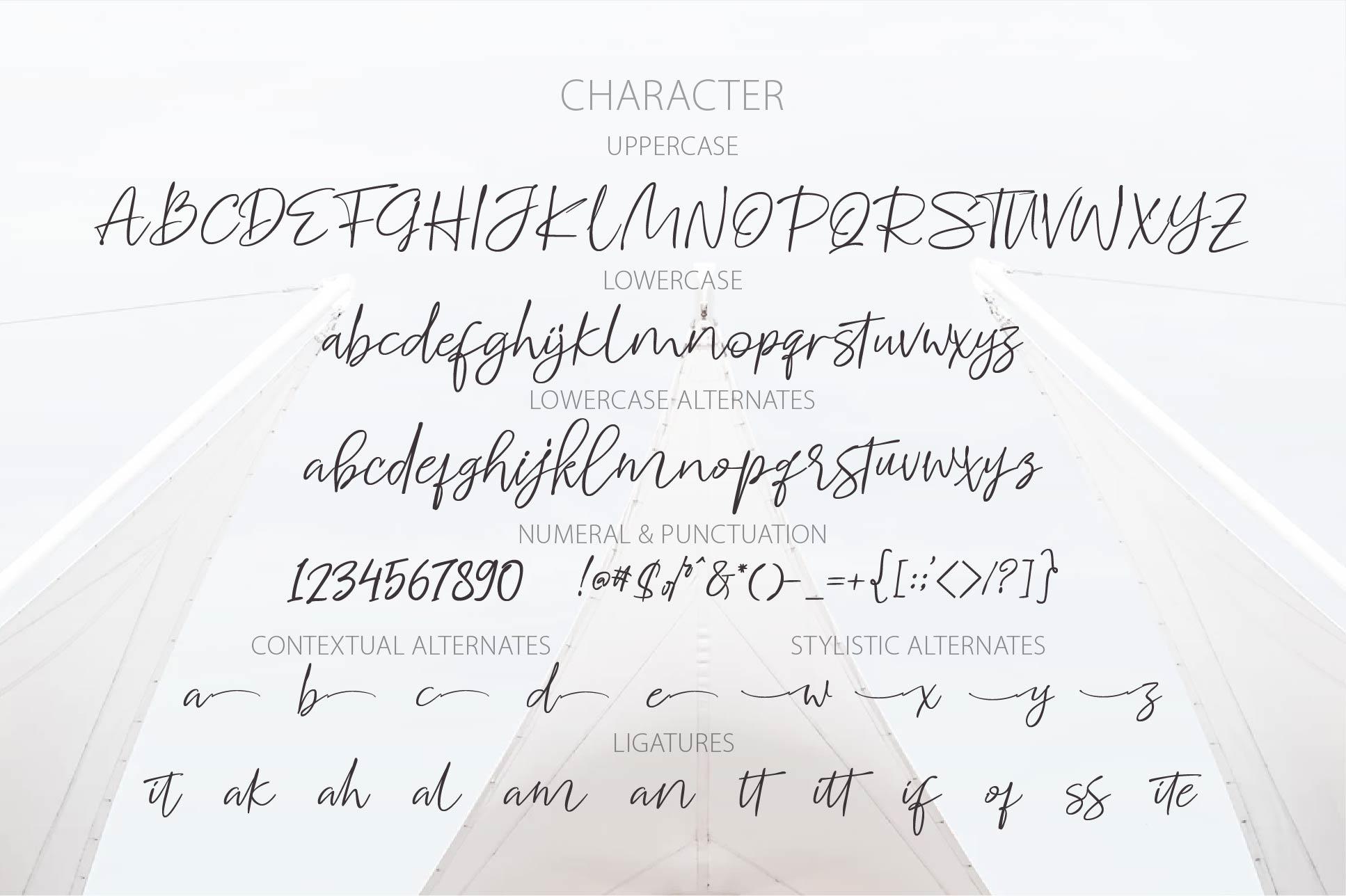 WHITECASE Script example image 5