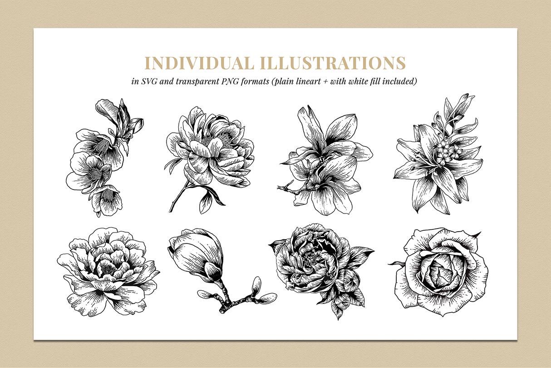 Botanical Illustration Bundle example image 4