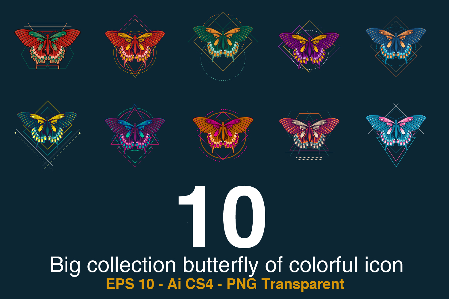 10 Big collection butterfly of colorful icon example image 2