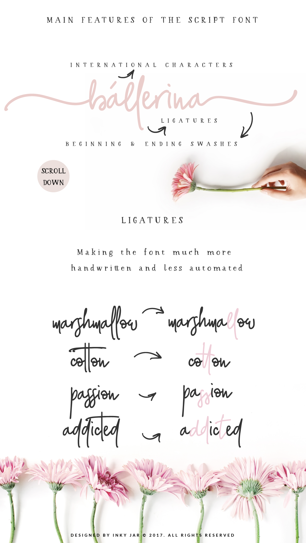 Glorious Font Duo Extras example image 9