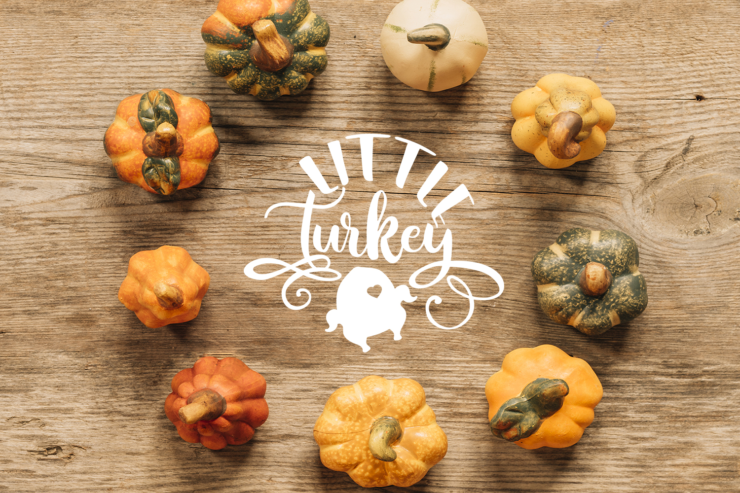 Thanksgiving bundle svg Gobble SVG Pumpkins svg Turkey example image 6