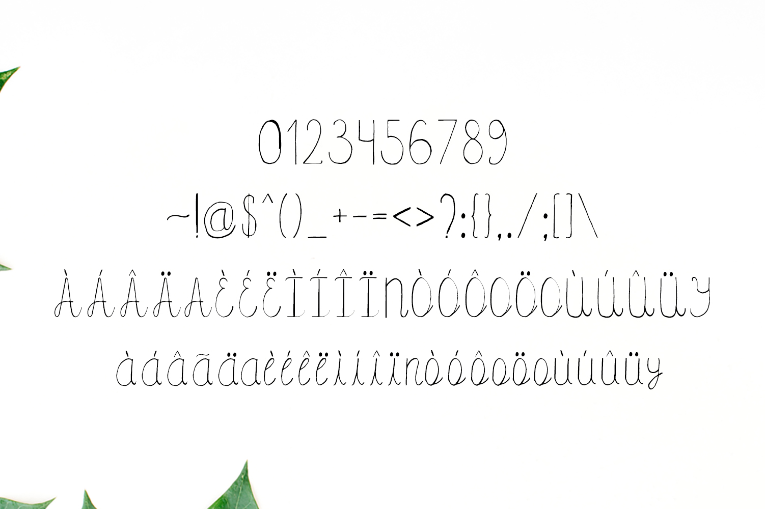 Amidala Script Font example image 5