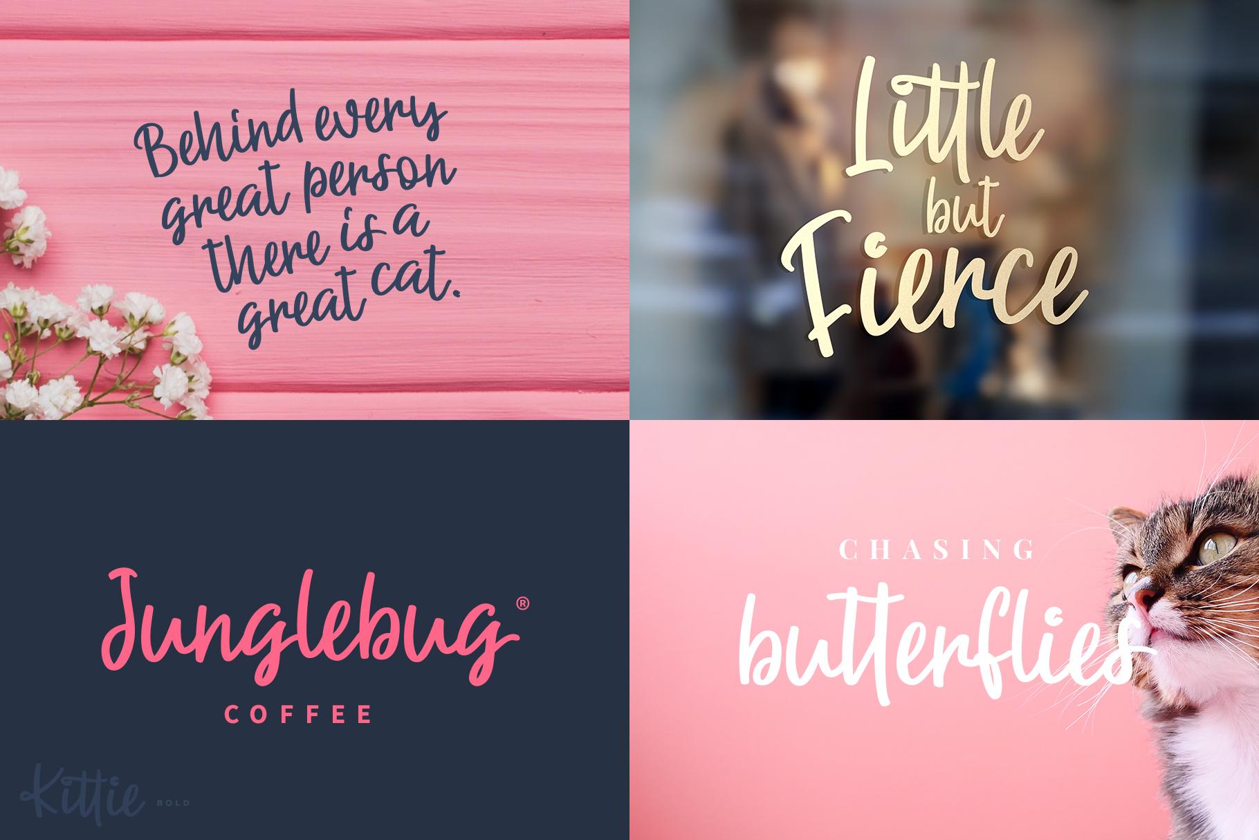 Kittie | Regular & Bold example image 6