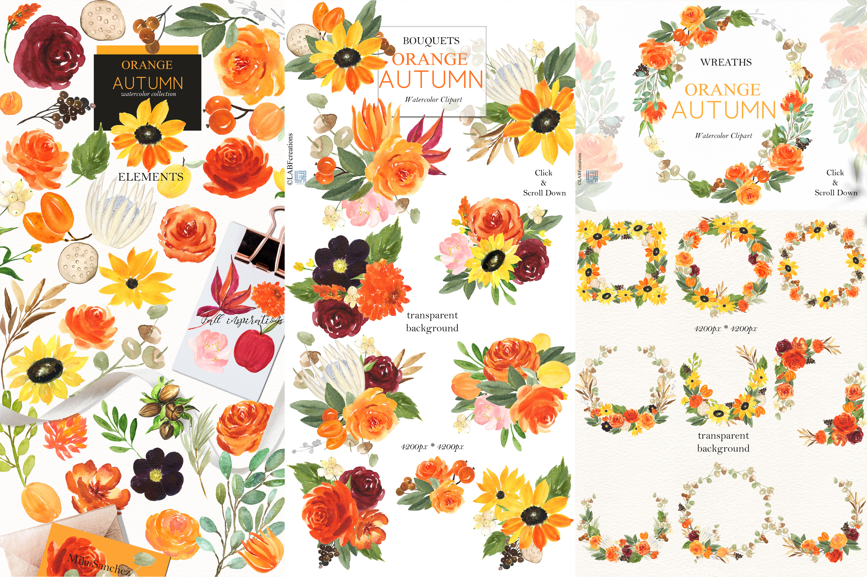 Orange, red and burgundy autumn flowers collection. example image 3
