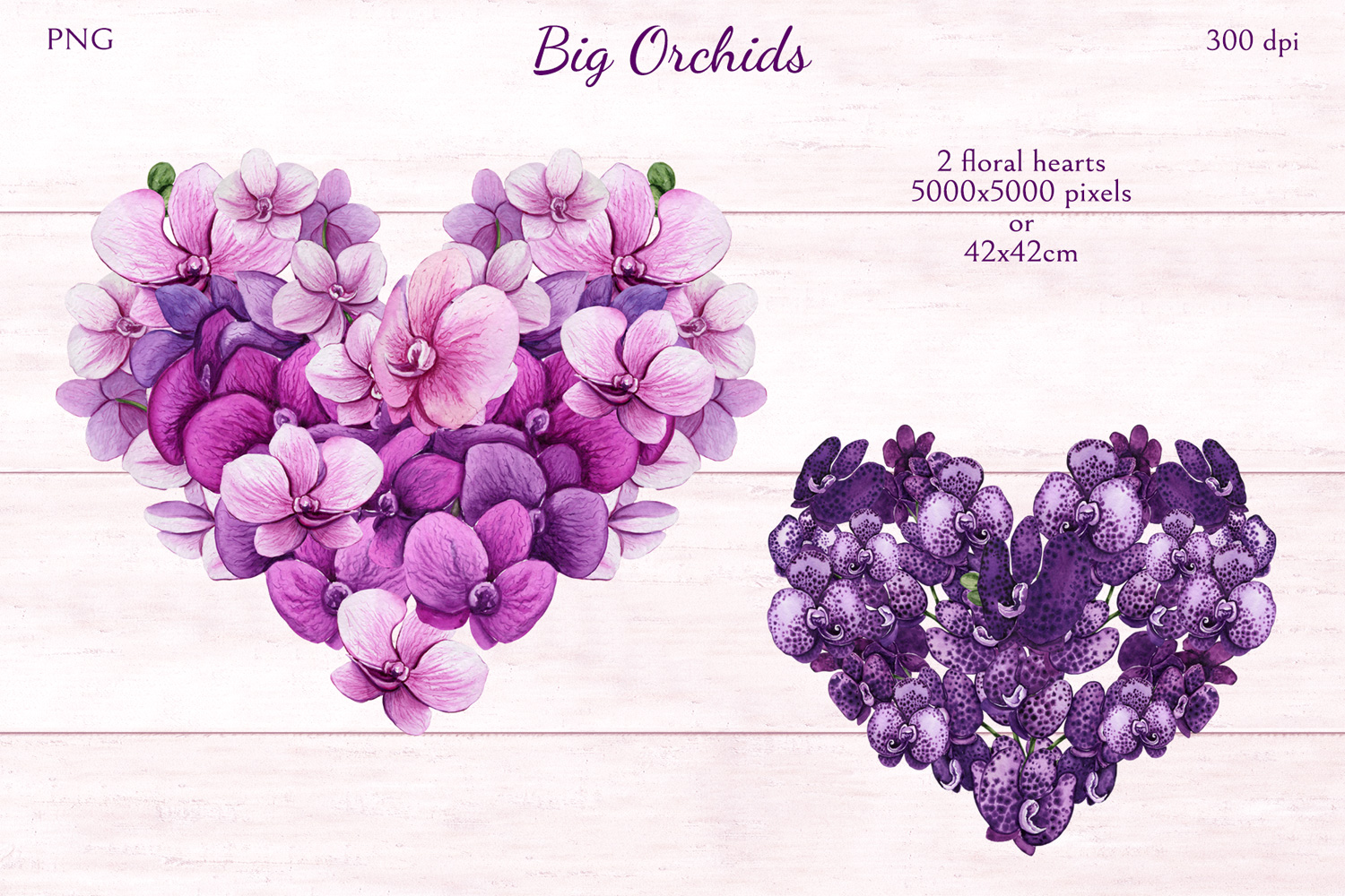Big Orchids example image 6