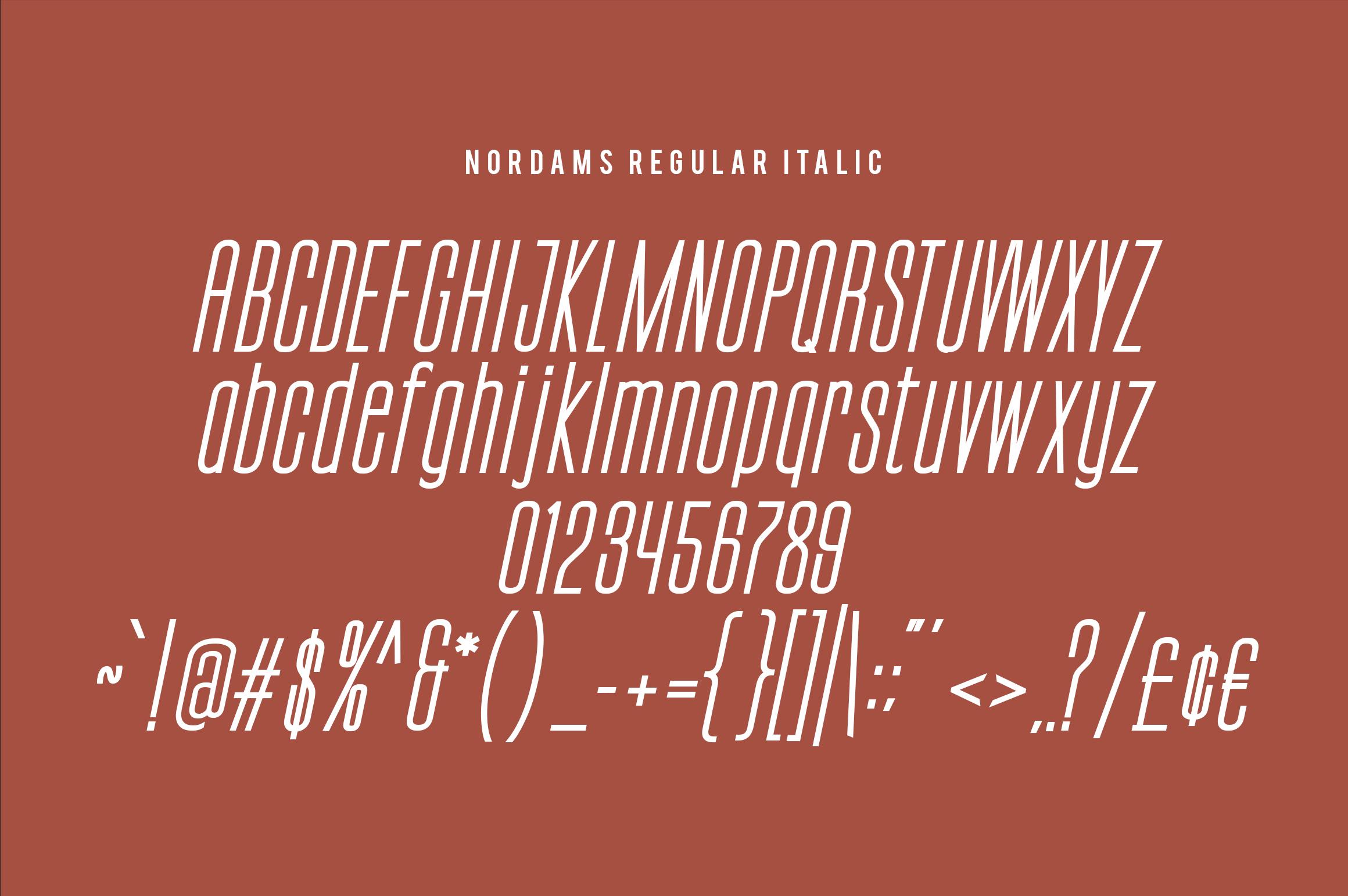 NORDAMS - Sans Serif example image 15