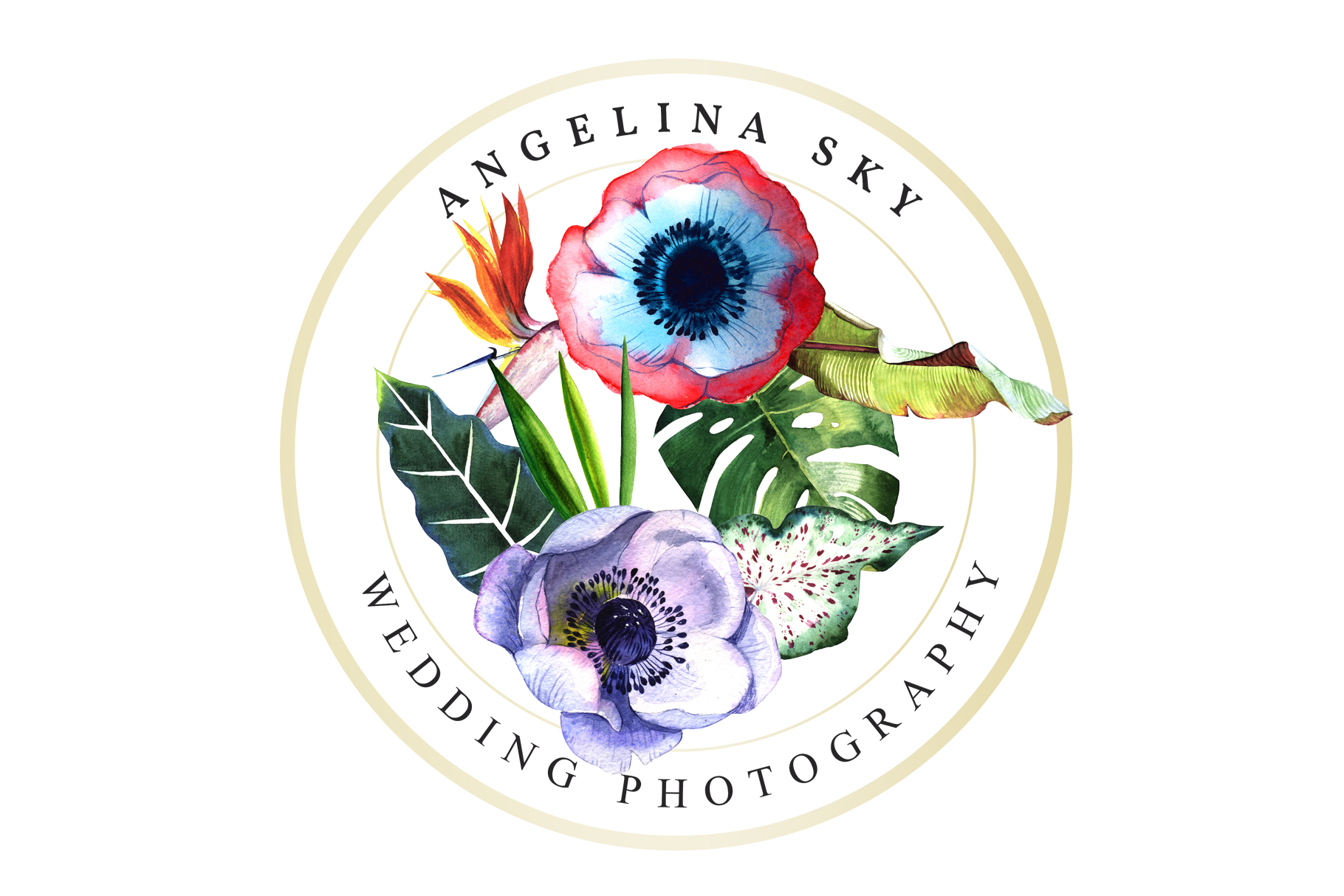 LOGO with tropical flowers Watercolor png example image 3