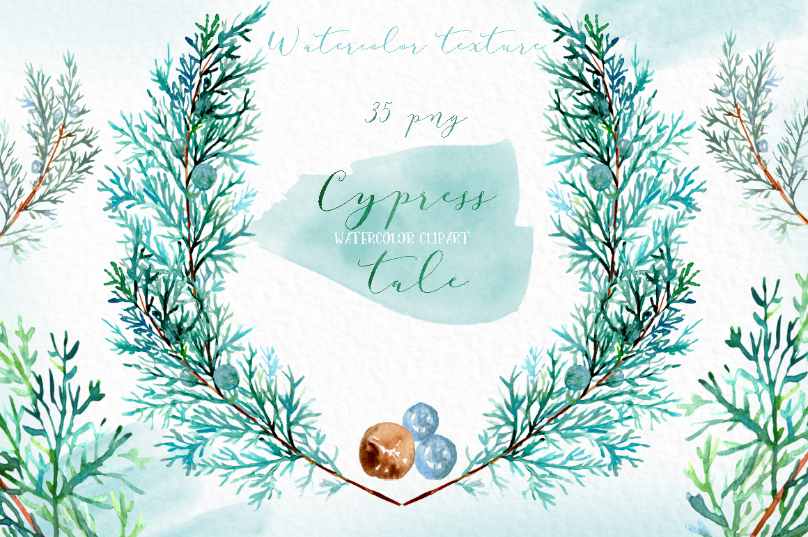 Cypress tale. Watercolor clipart. Cypress christmas branches example image 5