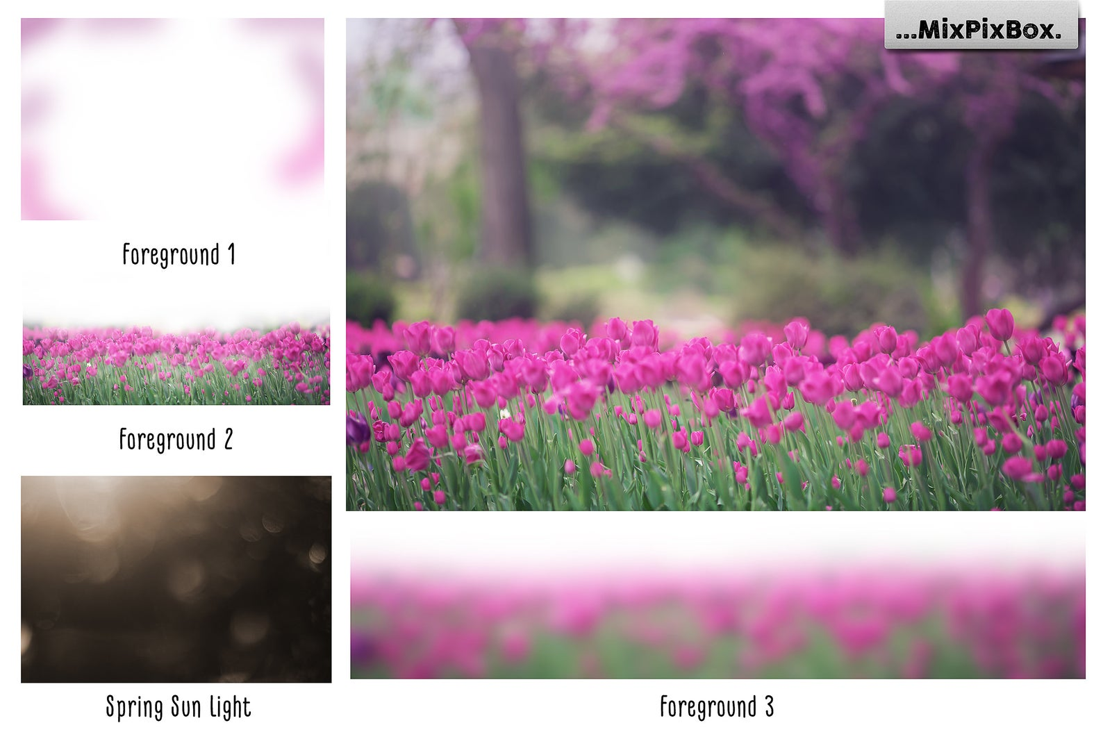 Spring Tulips Backdrop example image 3