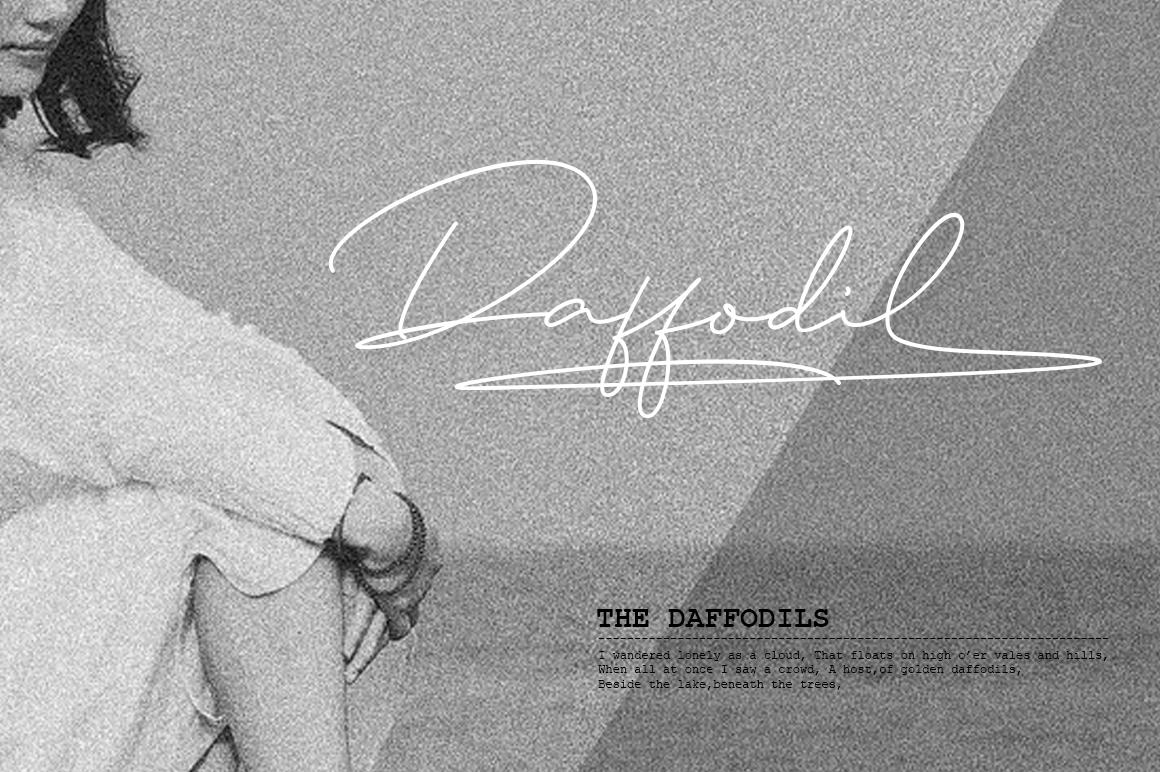 Daisy Signature font example image 9