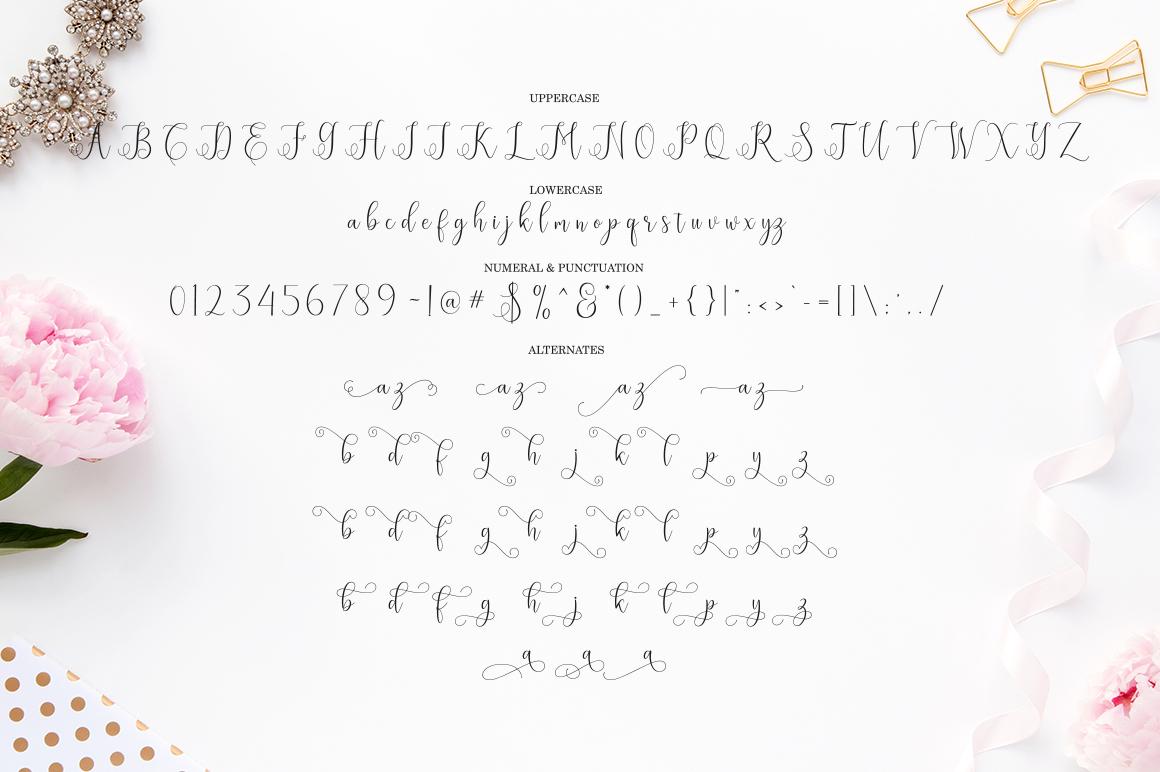 Eritta Script |Font Family example image 6