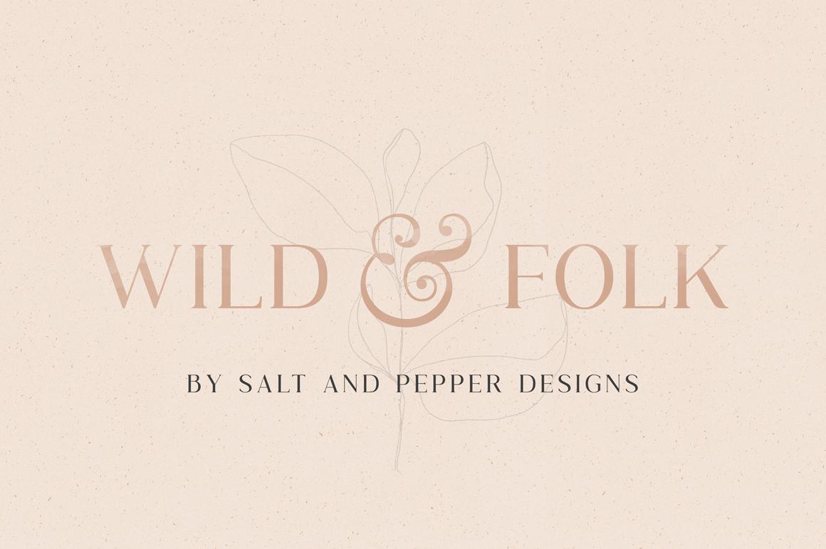 Wild & Folk Serif Font example image 1