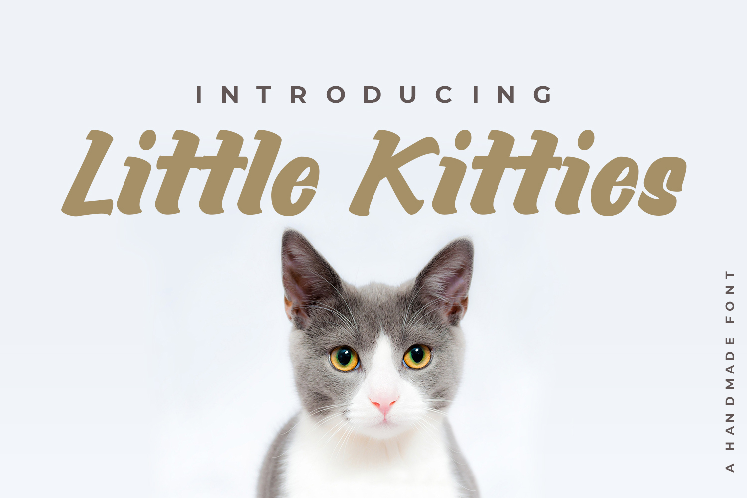 Little Kitties example image 1