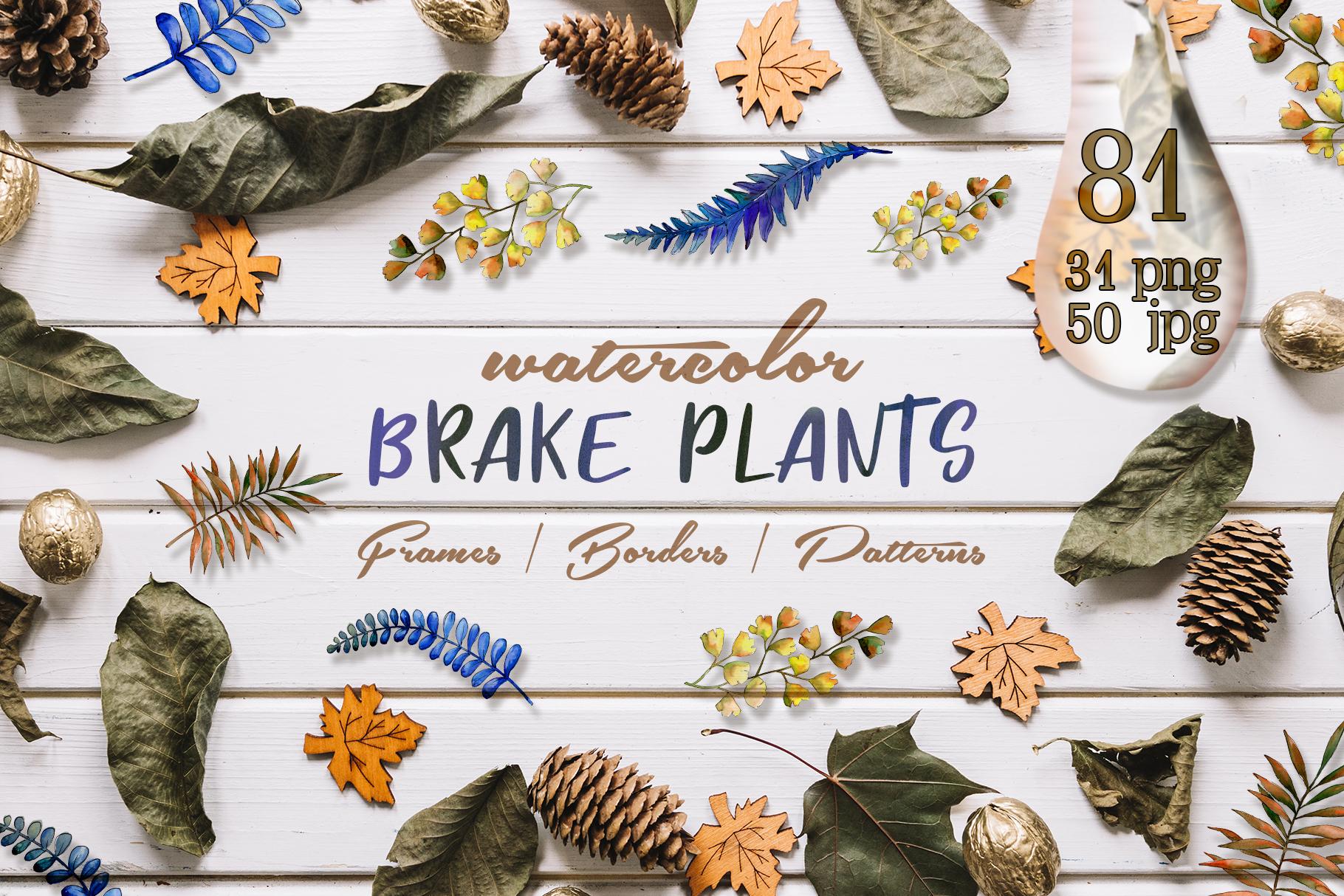 Brake plants PNG watercolor set example image 1