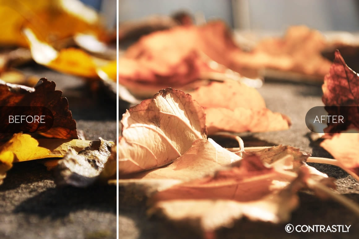 Autumn & Harvest Lightroom Presets Vol.2 example image 3