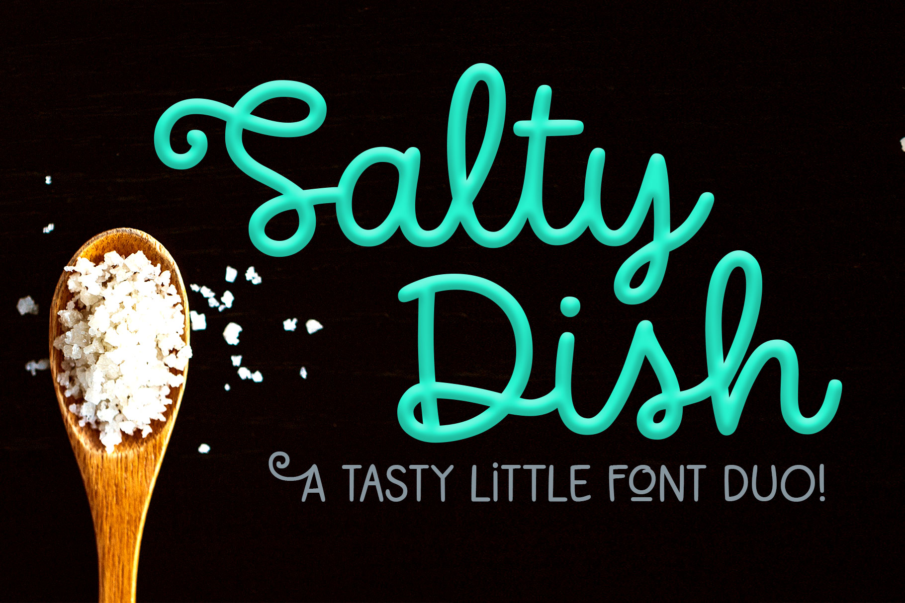 Salty Dish - script and sans font duo! example image 1