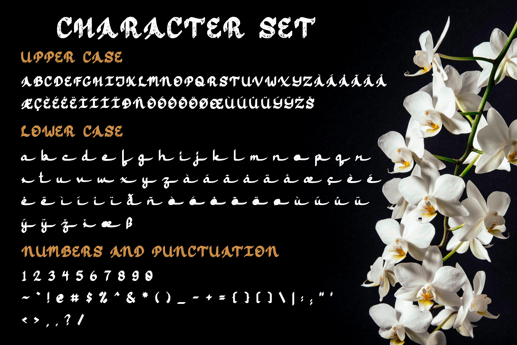 Jasmine Script example image 10