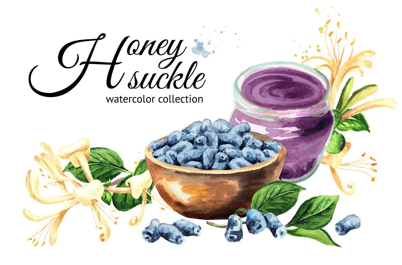 Honeysuckle. Watercolor set example image 1