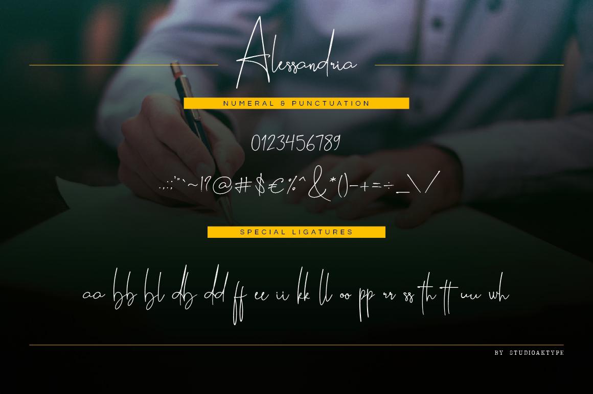 Alessandria Signature Font example image 11