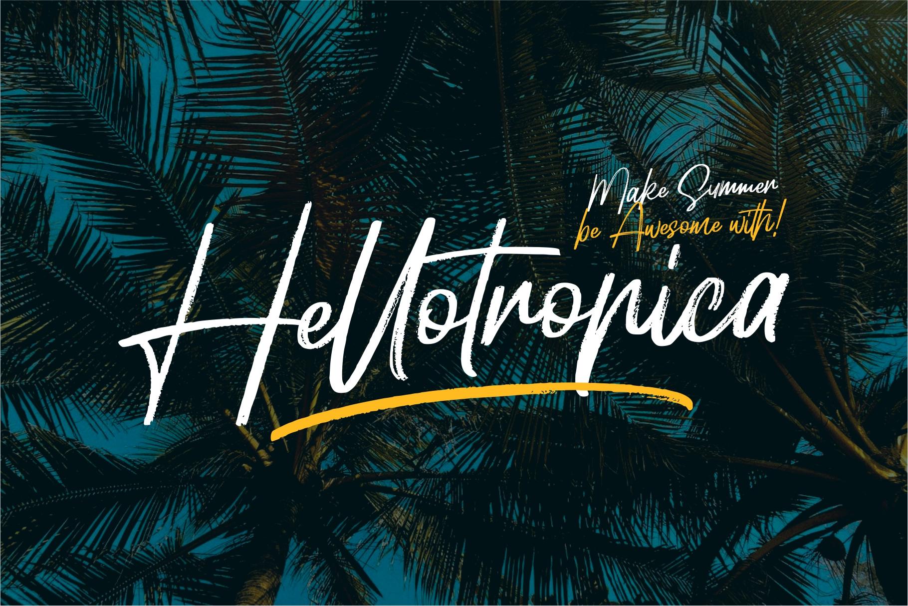 Hellotropica example image 1