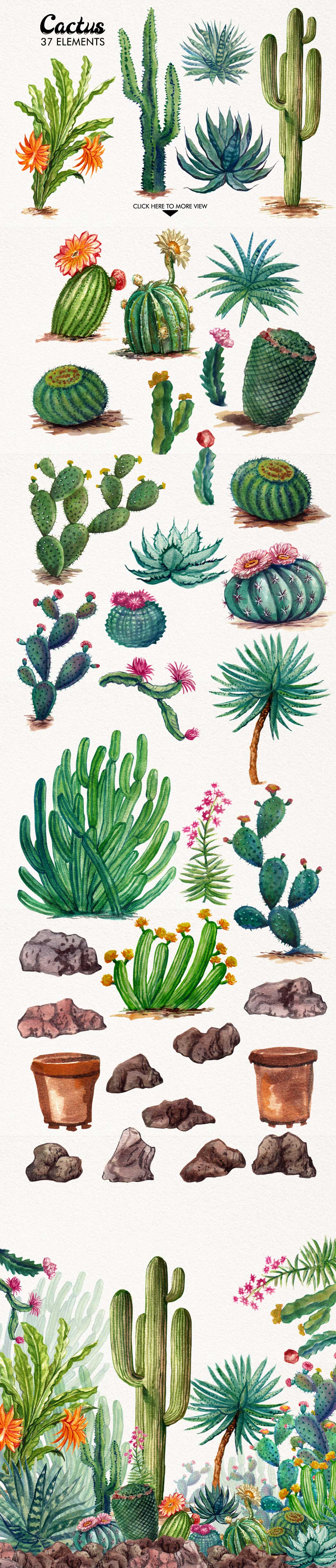 Watercolor Cactuses example image 3
