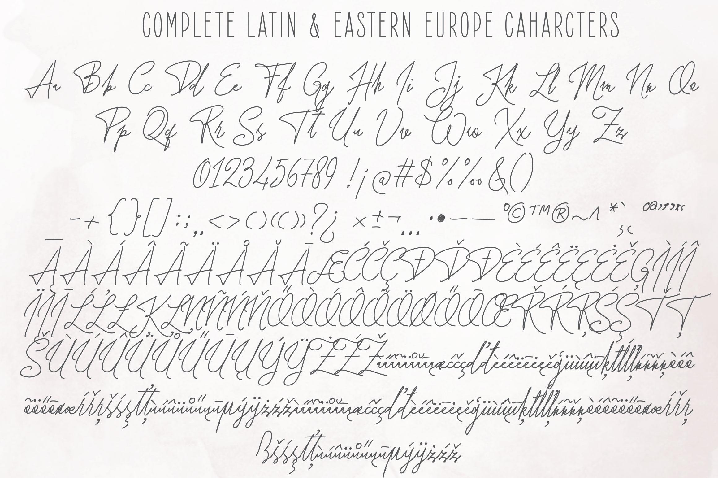 Forsythia Garden |Signature Typeface example image 8