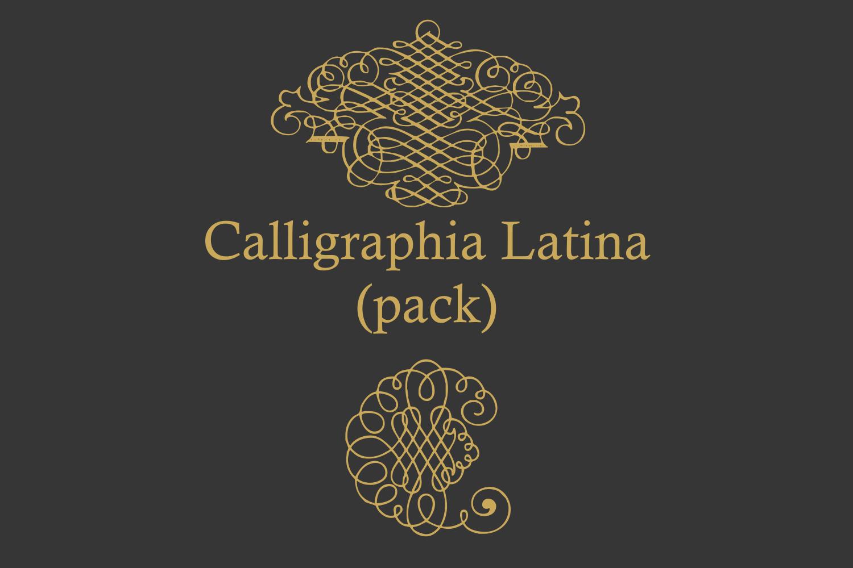 Calligraphia Latina Pack example image 3