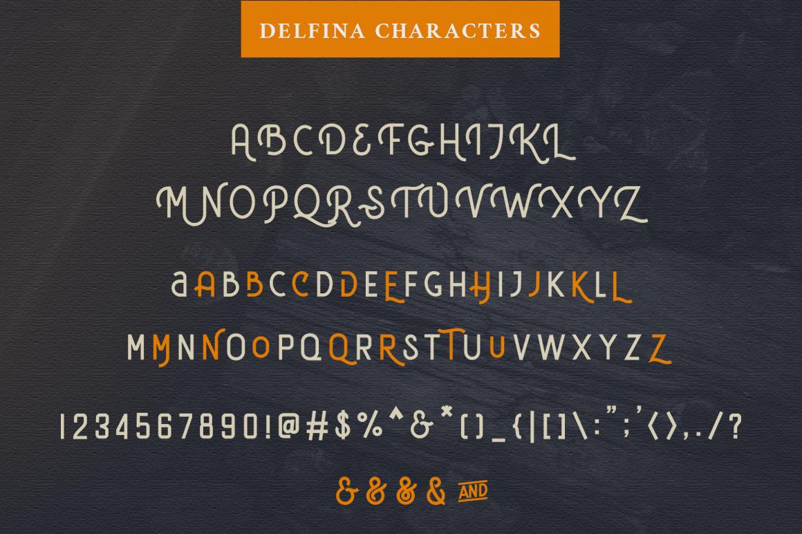 DELFINA - Vintage Sans Serif Font example image 5