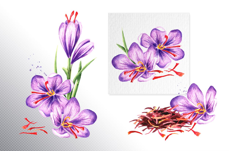 Saffron example image 2