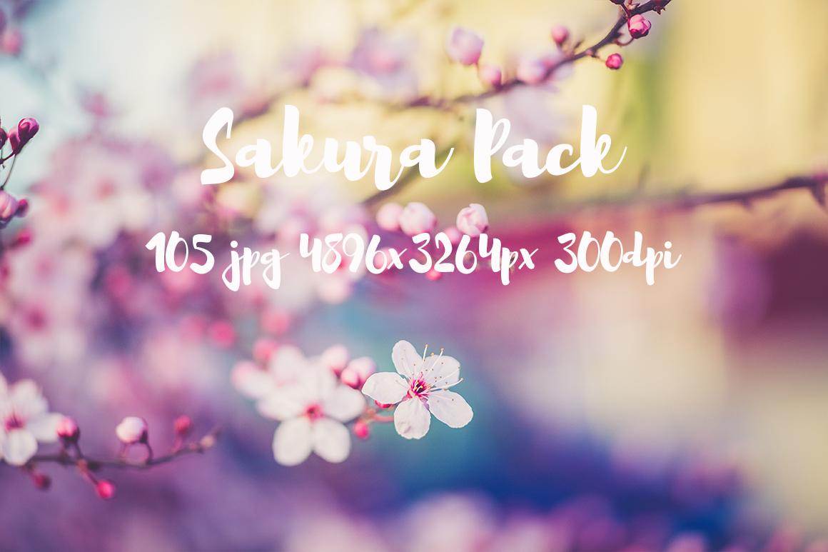 sakura photo pack example image 1