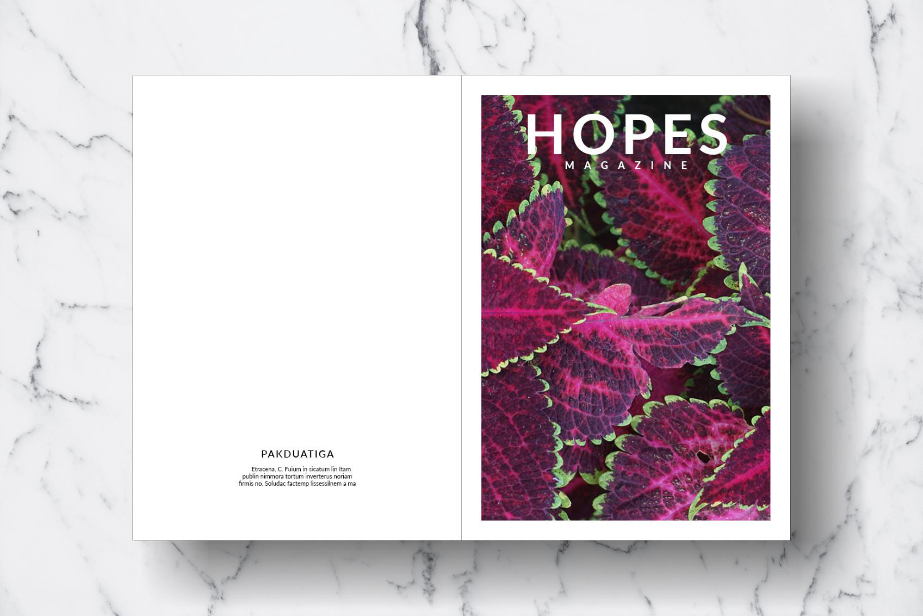 Magazine Template Vol. 15 example image 13
