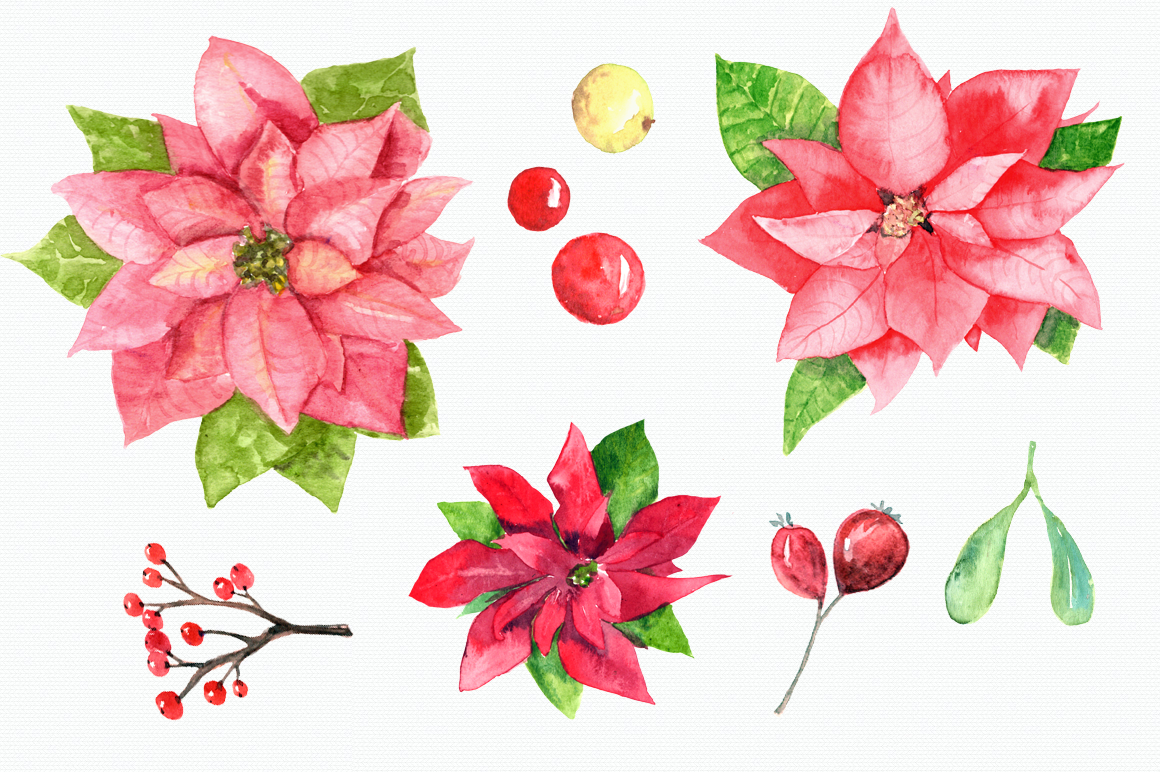 Watercolor Poinsettia Clip Art Set example image 3
