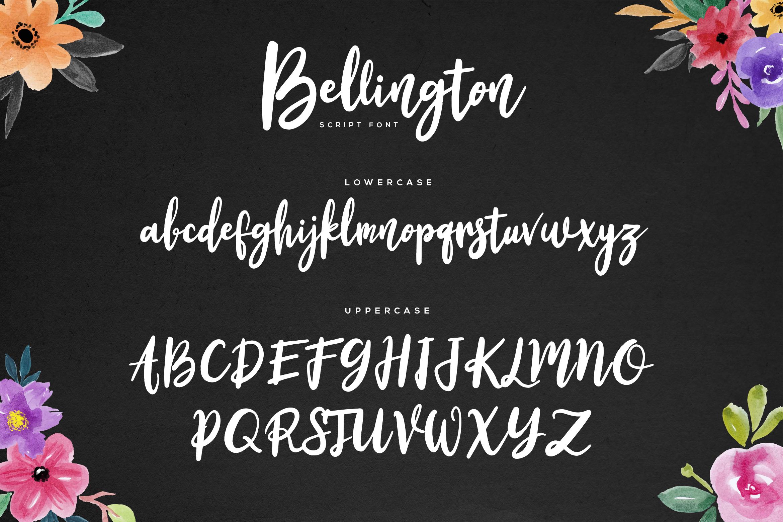 Bellington Script Font example image 6