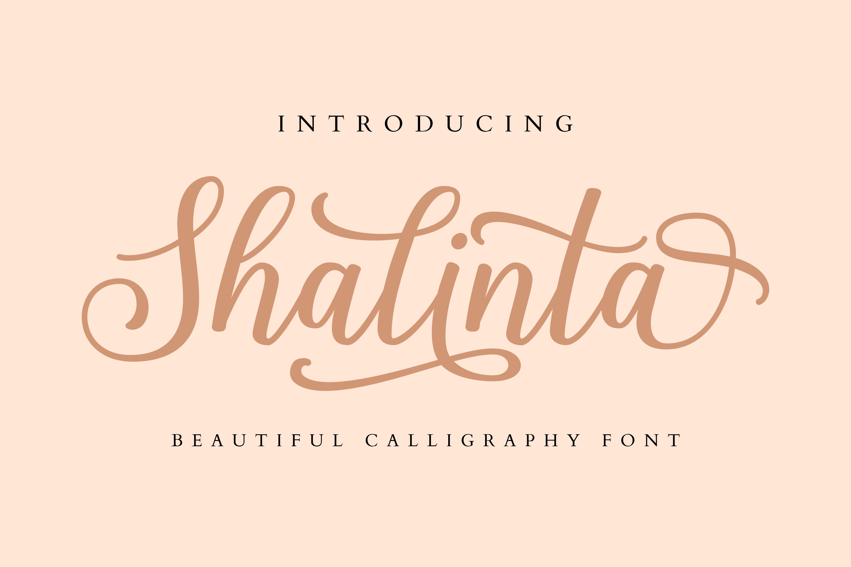Shalinta - Calligraphy Font example image 1