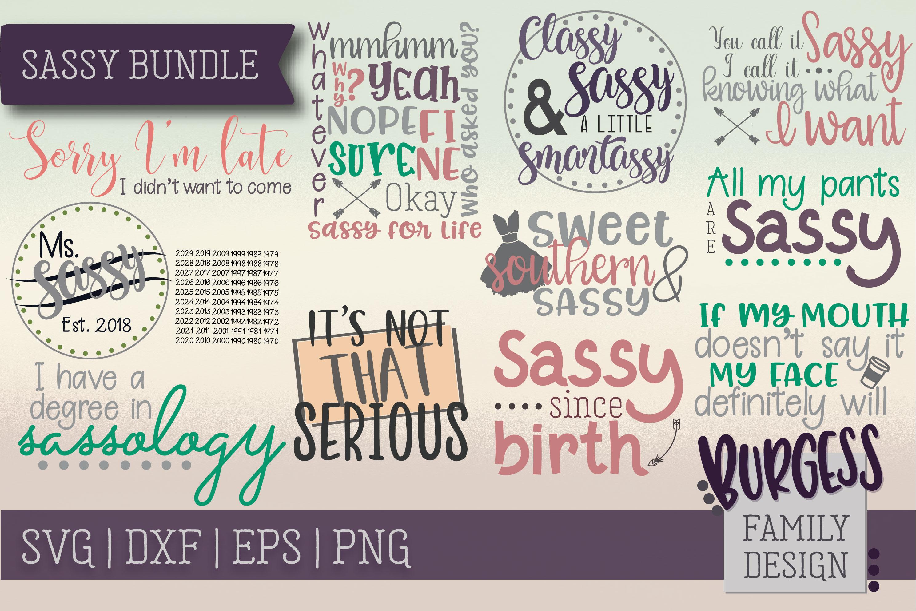 The starter bundle - Over 200 Designs | SVG DXF EPS PNG example image 19