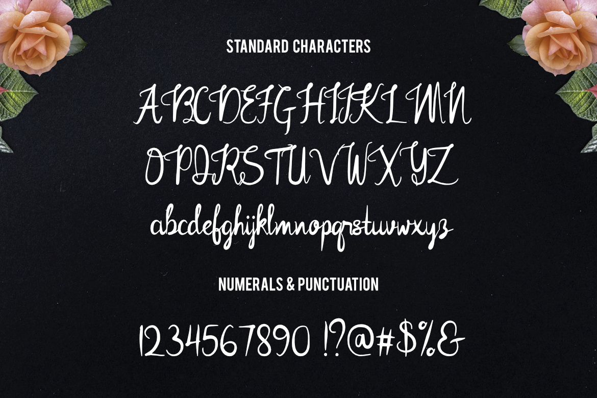 Rose Mellow Font example image 2