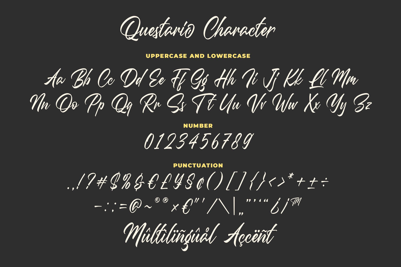 Questario - Stylish Script Font example image 6