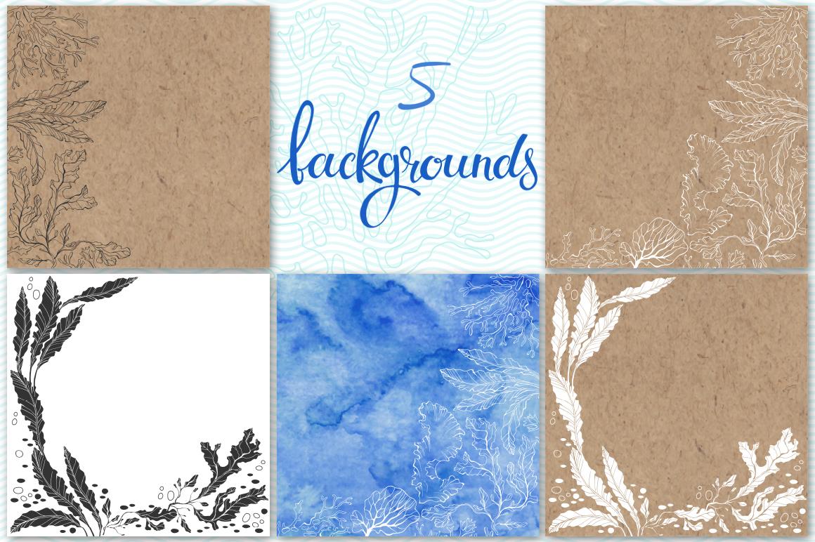Underwater plants. Graphic set. example image 3
