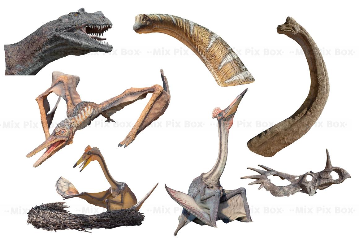 Dinosaur v.2 Photo Overlays example image 6