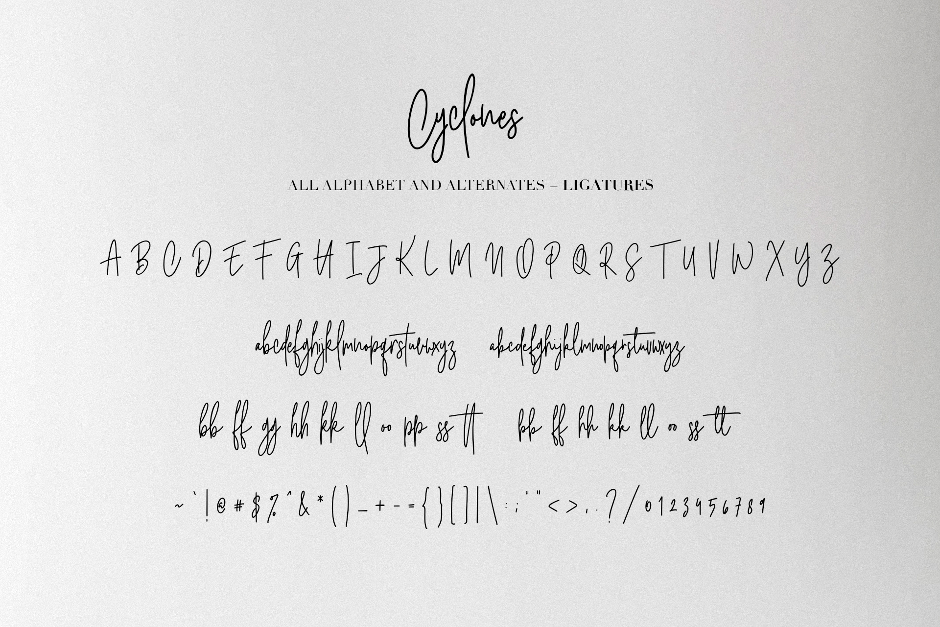 Cyclones Signature Brush Font example image 10