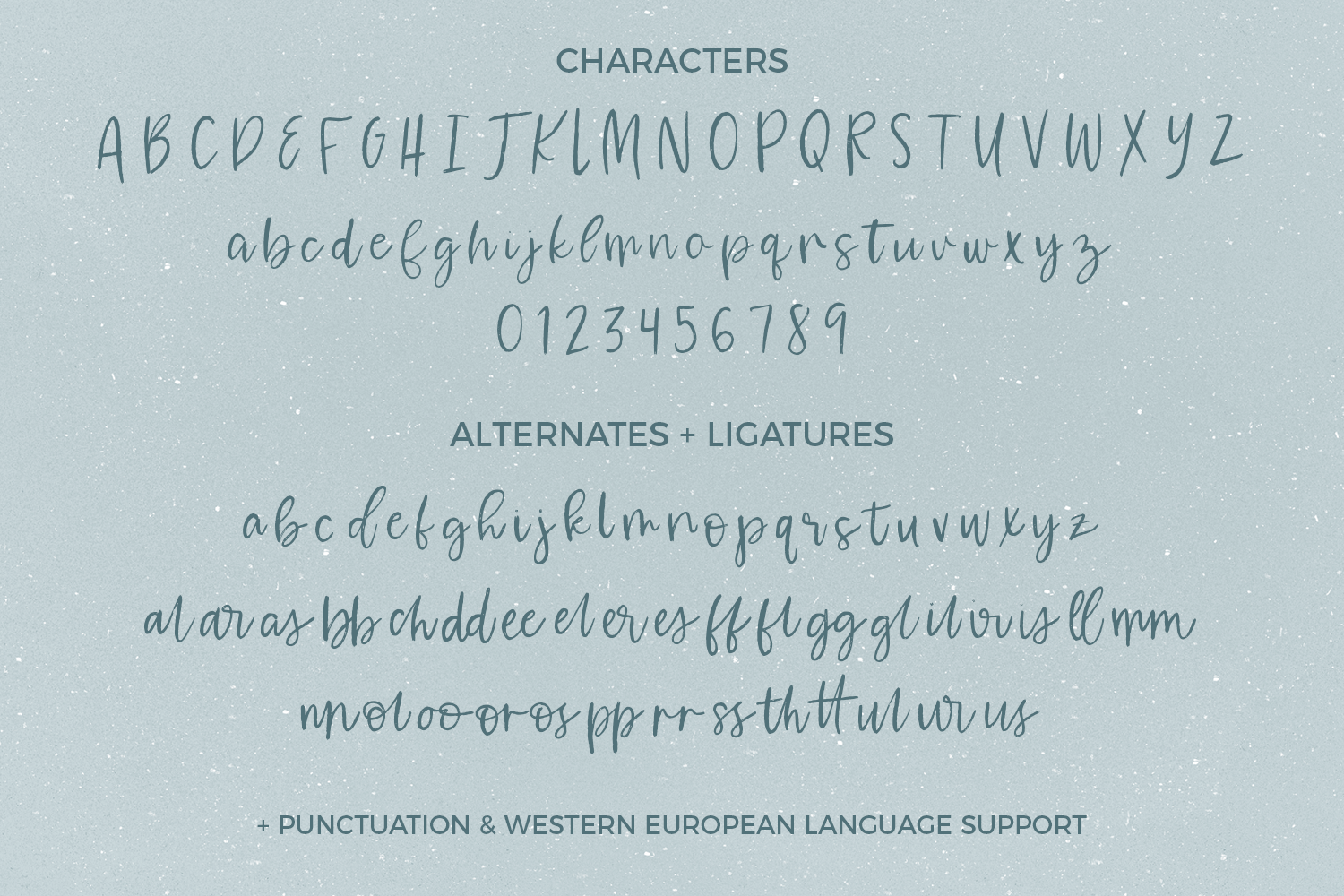 Waterssong Brush Script example image 8