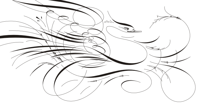 Calligraphic Birds Family Pack example image 3