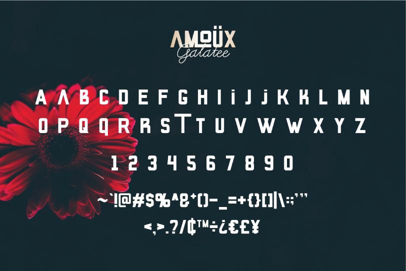 AMOÜX & Galatee | Font Duo example image 6