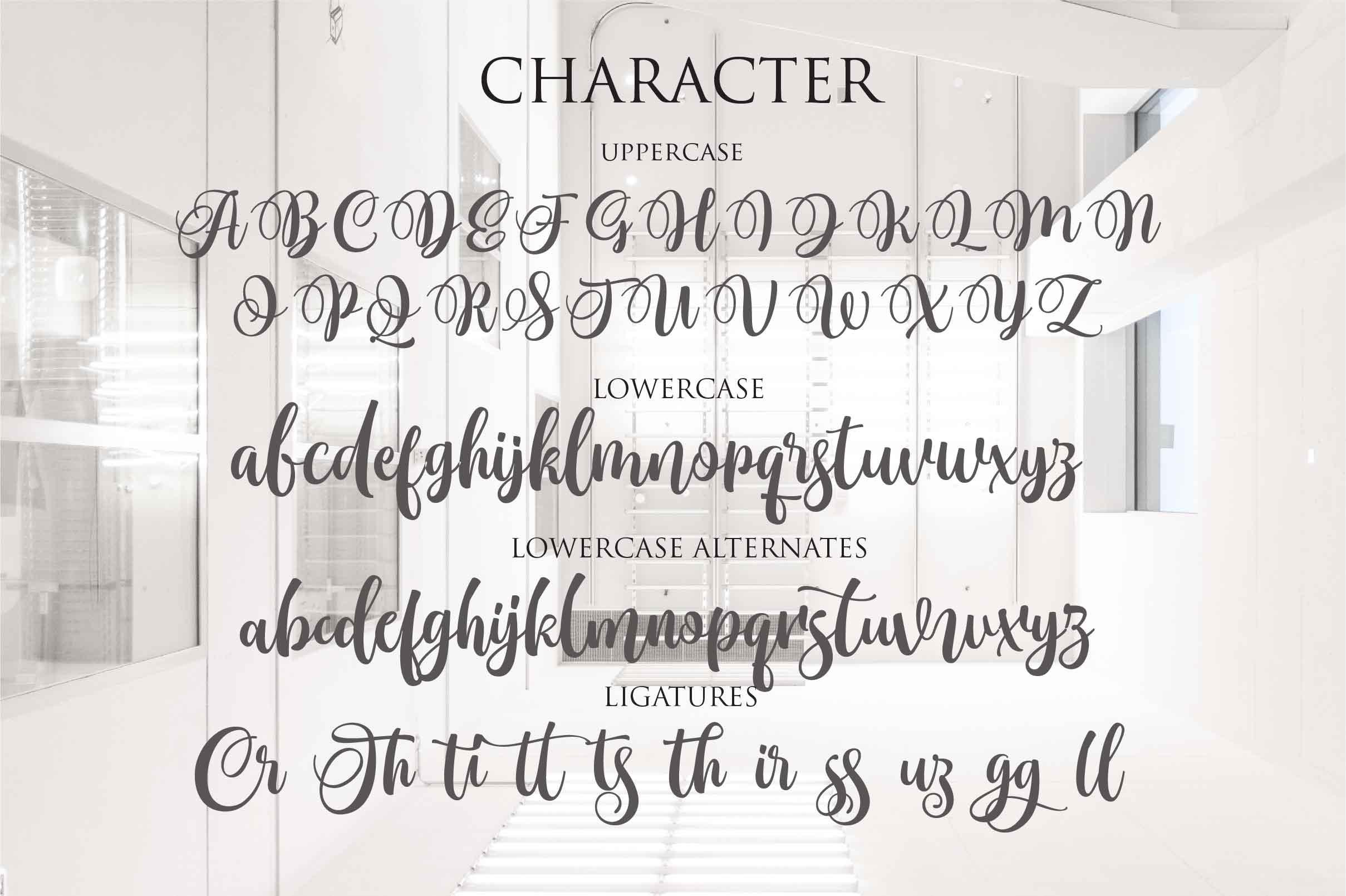 Monttassic - Luxury Script Font example image 3