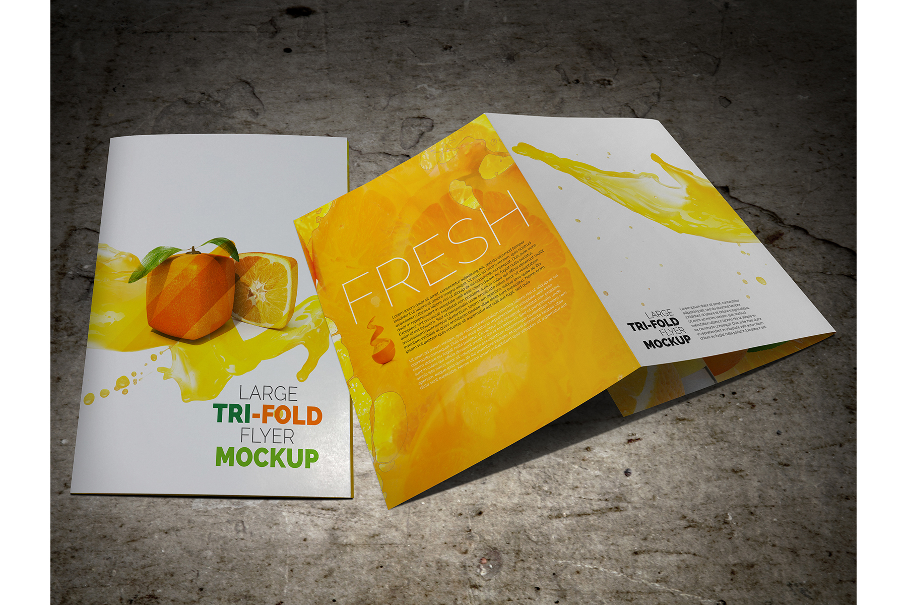 Large Trifold Brochure Mockup example image 10