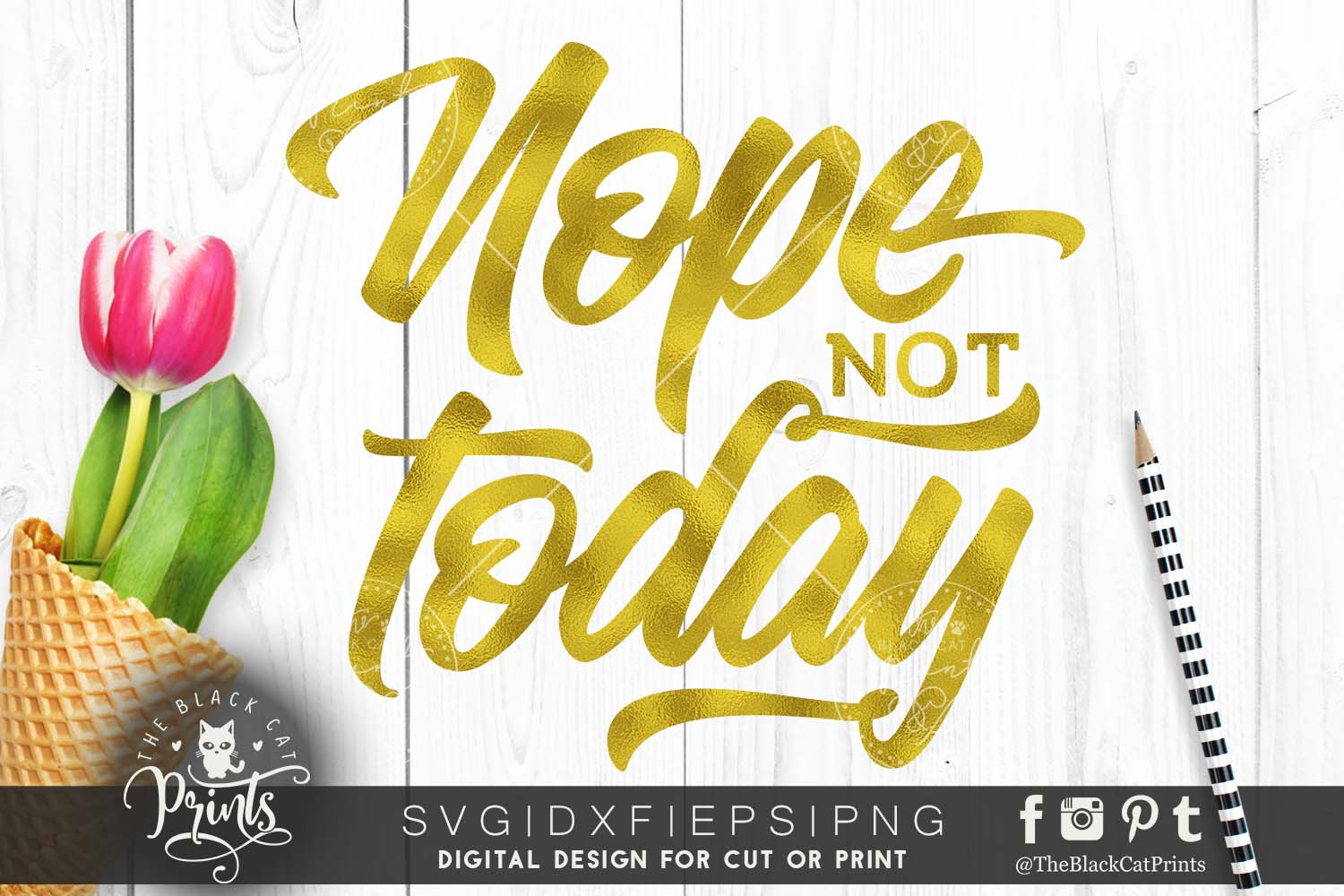 Nope Not Today SVG DXF PNG EPS example image 1