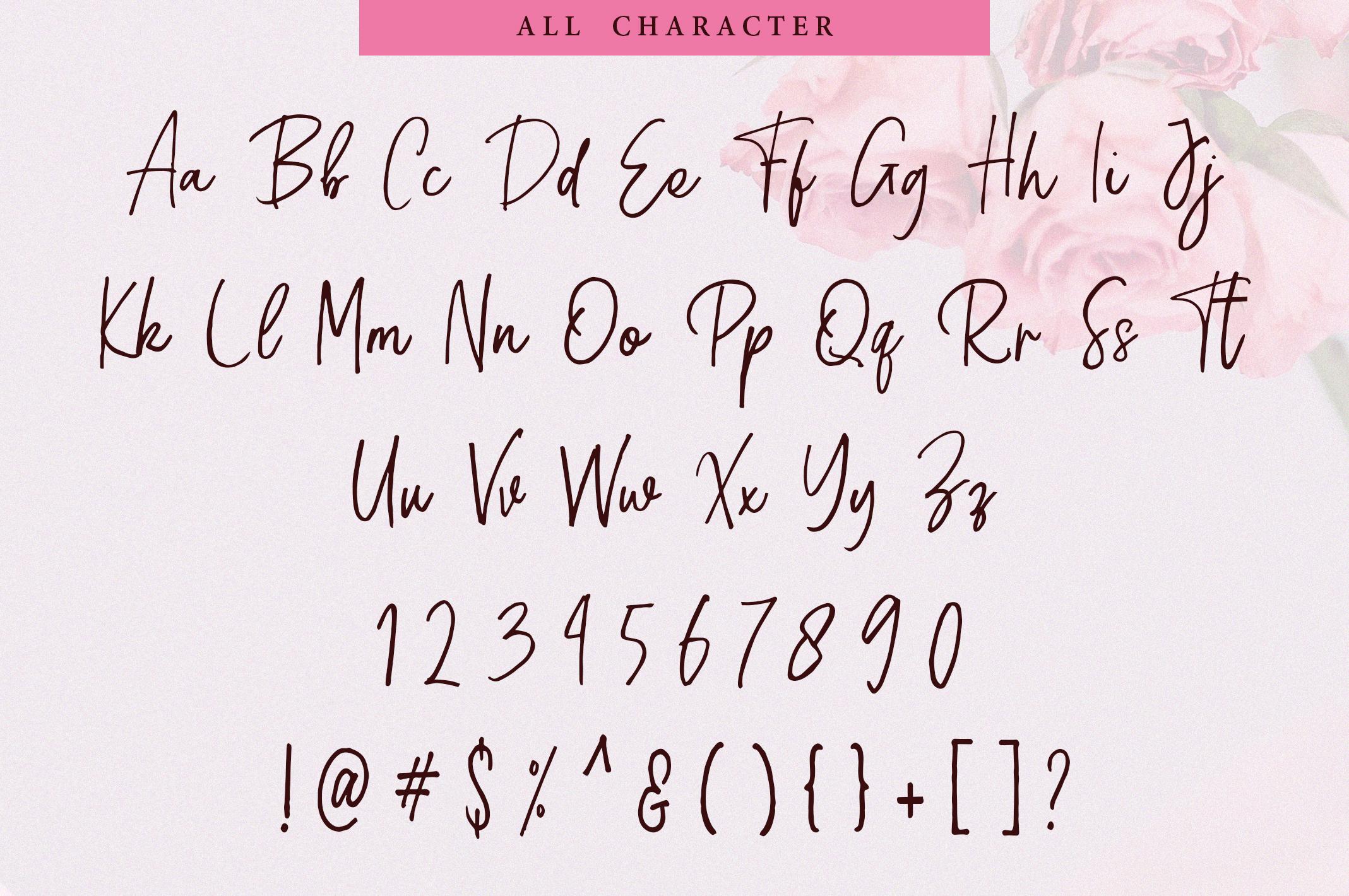 Fianna | Handwritten Script Font example image 2